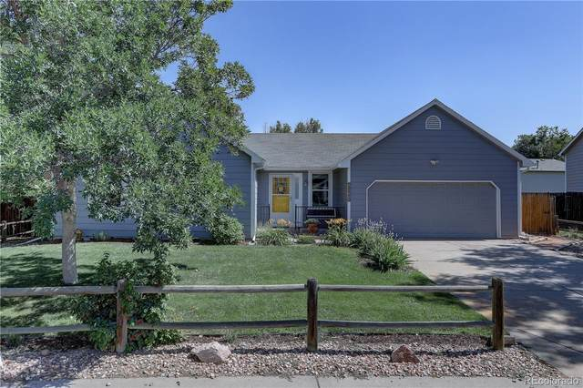 8525 Wheatgrass Circle, Parker, CO 80134 (#2092688) :: The Margolis Team