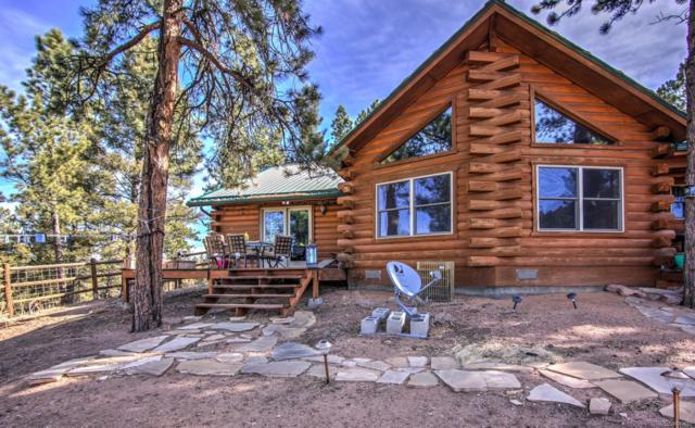 1910 Wildhorn Road, Florissant, CO 80816 (#2094088) :: The DeGrood Team
