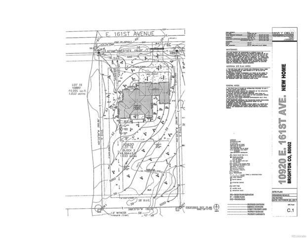 10920 E 161st Avenue, Brighton, CO 80602 (#2094147) :: Wisdom Real Estate