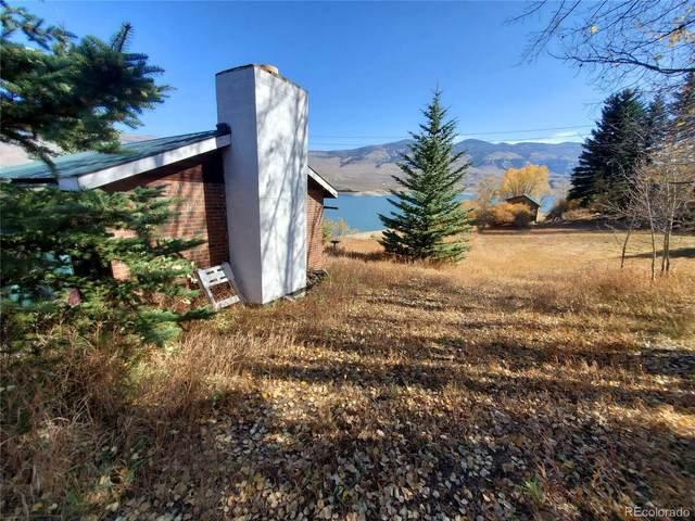 133 Shore View Drive, Silverthorne, CO 80498 (#2094229) :: Bring Home Denver with Keller Williams Downtown Realty LLC