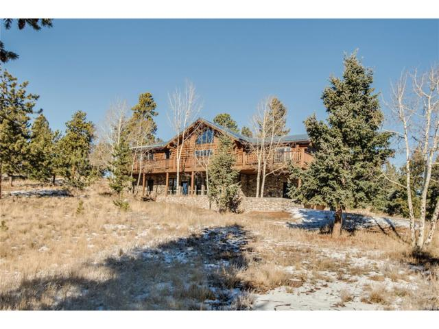 1392 Tapadero Road, Bailey, CO 80421 (MLS #2096078) :: 8z Real Estate