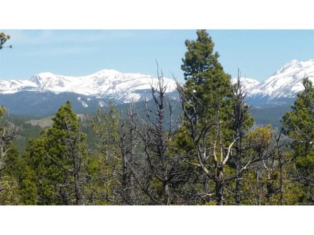 7 Bull Moose Run, Black Hawk, CO 80422 (MLS #2096135) :: 8z Real Estate