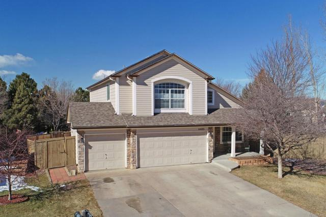 4485 W Antelope Run Court, Castle Rock, CO 80109 (#2096863) :: The Peak Properties Group
