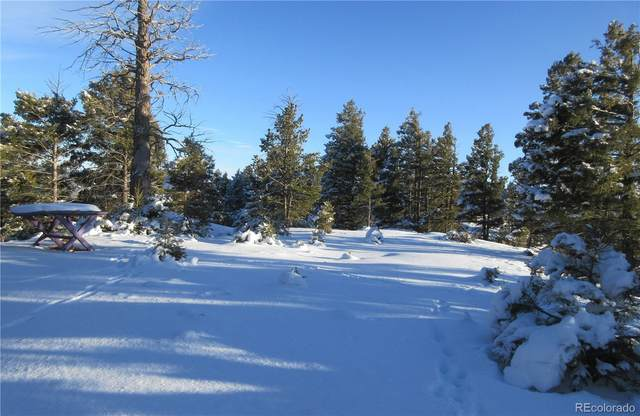 13464 Deer Ridge Way, Larkspur, CO 80118 (#2099428) :: James Crocker Team