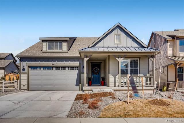 8503 Estes Park Avenue, Littleton, CO 80125 (#2099965) :: Finch & Gable Real Estate Co.