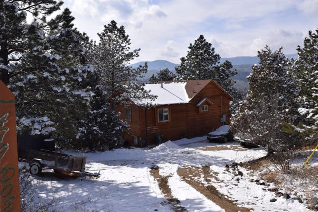 479 Doe Circle, Bailey, CO 80421 (MLS #2105130) :: 8z Real Estate