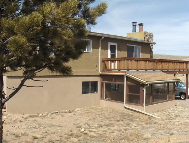 193 Wagon Wheel Road, Hartsel, CO 80449 (#2105443) :: The City and Mountains Group
