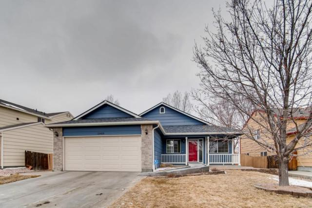 11419 E 116th Avenue, Commerce City, CO 80640 (#2106200) :: The DeGrood Team
