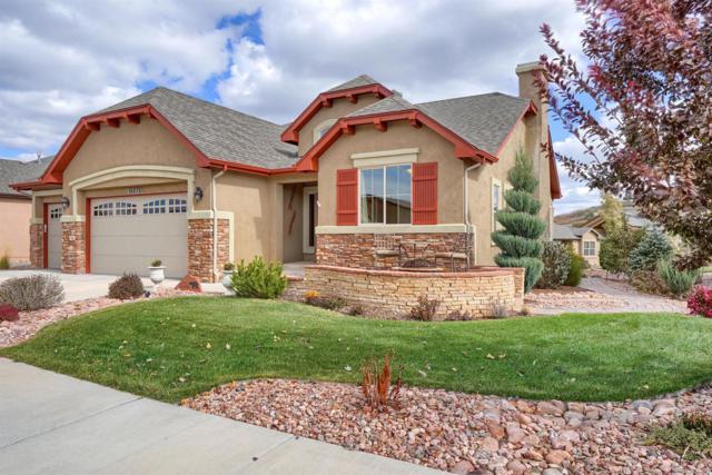 13273 Dominus Way, Colorado Springs, CO 80921 (MLS #2108592) :: Kittle Real Estate