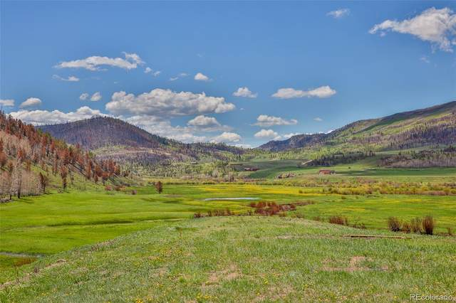 Tbd Gcr 408 Lot 9, Granby, CO 80446 (MLS #2111893) :: Clare Day with LIV Sotheby's International Realty