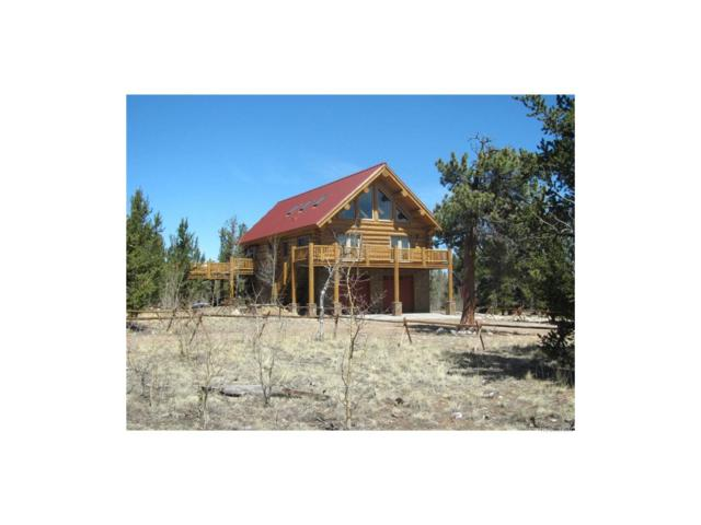 199 Browns Pass, Fairplay, CO 80440 (MLS #2112533) :: 8z Real Estate