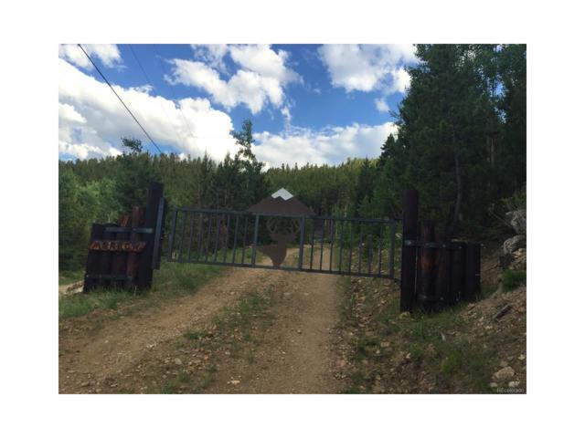 Bear Paw Rd, Golden, CO 80403 (MLS #2114486) :: 8z Real Estate