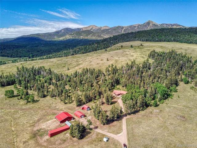 5714 County Road 111, Westcliffe, CO 81252 (#2115279) :: Bring Home Denver with Keller Williams Downtown Realty LLC