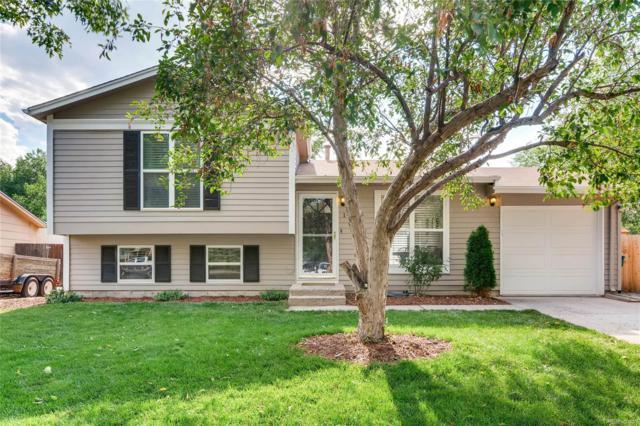 10535 W Lambuth Place, Lakewood, CO 80235 (#2120153) :: Hometrackr Denver
