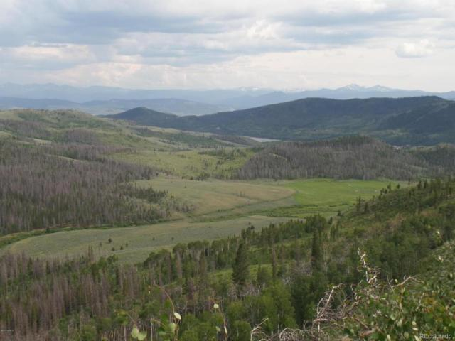 1665 County Road 4081, Granby, CO 80446 (#2123933) :: The Peak Properties Group