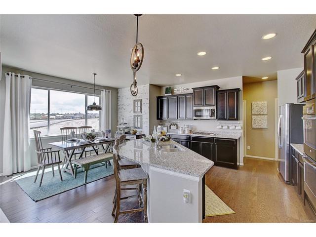 4381 Sidewinder Loop, Castle Rock, CO 80108 (MLS #2125666) :: 8z Real Estate