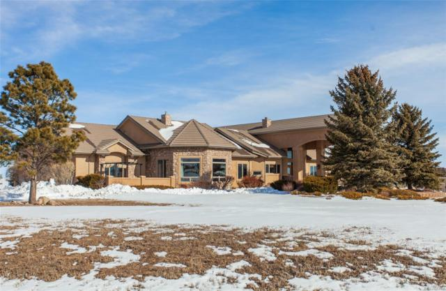 20419 Taversham Court, Monument, CO 80132 (MLS #2126435) :: 8z Real Estate