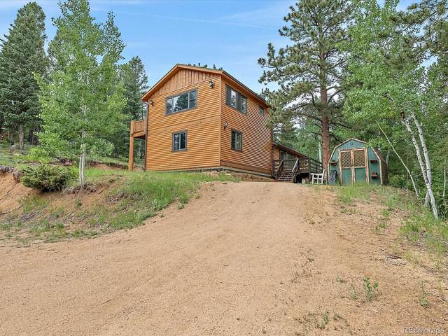 302 Miners Way, Bailey, CO 80421 (#2131065) :: Wisdom Real Estate