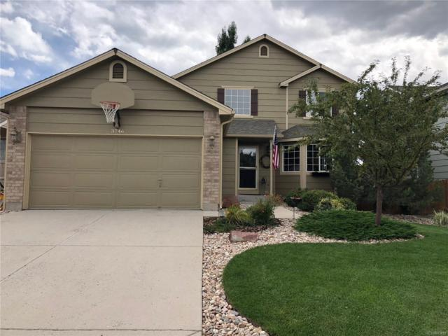 3746 Black Feather Trail, Castle Rock, CO 80104 (#2131789) :: Bring Home Denver