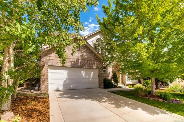 6534 S Pierson Way, Littleton, CO 80127 (#2132098) :: The Griffith Home Team