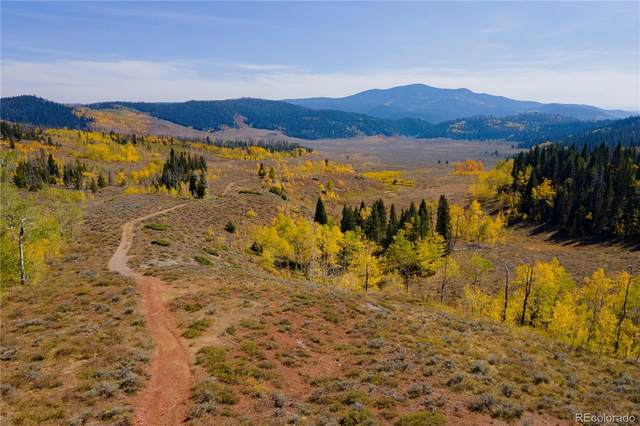 33990A Highway 134, Toponas, CO 80479 (MLS #2133264) :: Bliss Realty Group