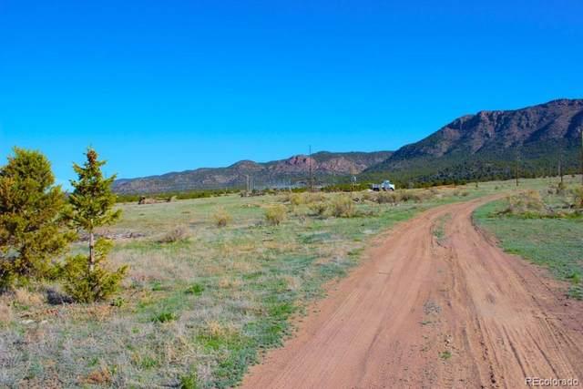 Hwy 50, Canon City, CO 81212 (MLS #2133506) :: Find Colorado