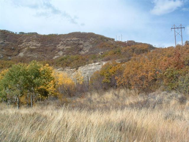 County Road 27, Oak Creek, CO 80467 (#2133727) :: The Peak Properties Group
