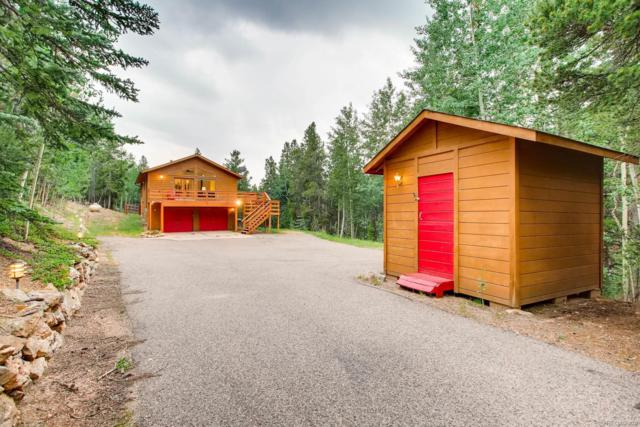11395 Pauls Drive, Conifer, CO 80433 (#2133781) :: The DeGrood Team