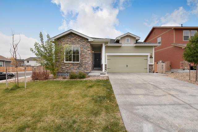 4488 E 95th Court, Thornton, CO 80229 (#2136343) :: The DeGrood Team