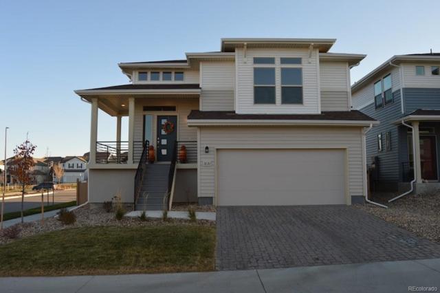 3131 Hardin Street, Castle Rock, CO 80109 (#2147353) :: The HomeSmiths Team - Keller Williams