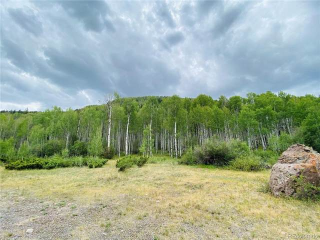 6 Elk Meadows Run, Antonito, CO 81120 (MLS #2147687) :: Find Colorado
