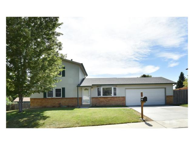 7558 Lamar Court, Arvada, CO 80003 (#2153437) :: The Pete Cook Home Group