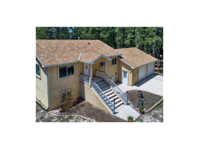 16780 Southwood Drive, Black Forest, CO 80908 (MLS #2161152) :: 8z Real Estate