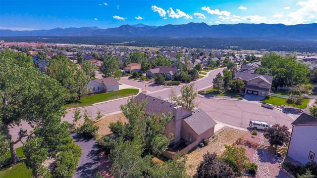 215 Sedona Drive, Colorado Springs, CO 80921 (#2164396) :: Harling Real Estate