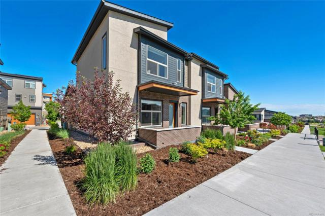 10130 Belvedere Loop, Lone Tree, CO 80124 (#2169662) :: The Dixon Group