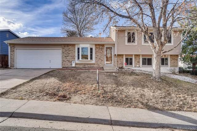 4921 S Wright Court, Morrison, CO 80465 (#2170948) :: Chateaux Realty Group