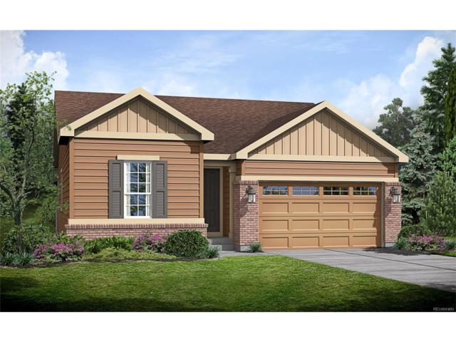 6162 N Genoa Street, Aurora, CO 80019 (MLS #2174298) :: 8z Real Estate