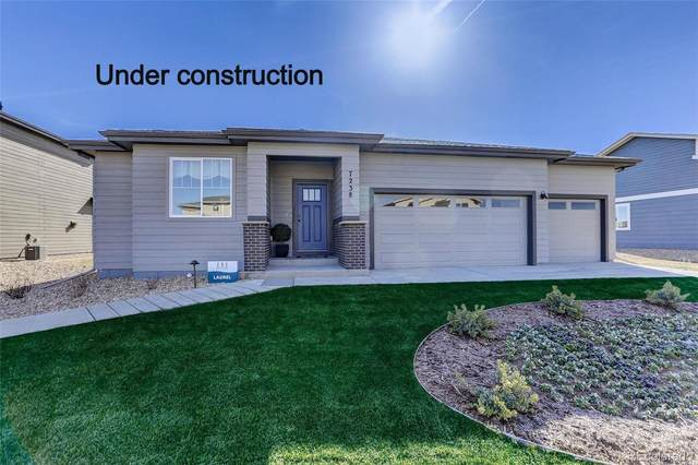 3962 Buckthorn Street, Wellington, CO 80549 (#2176687) :: Re/Max Structure