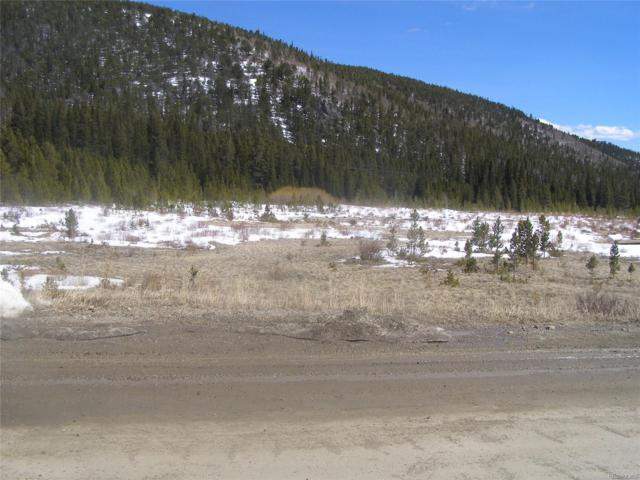 Lots 43 & 44 Silver Creek Road, Idaho Springs, CO 80452 (#2178678) :: Mile High Luxury Real Estate