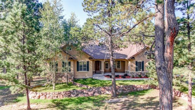 4781 Secluded Creek Court, Colorado Springs, CO 80908 (#2178703) :: The Peak Properties Group