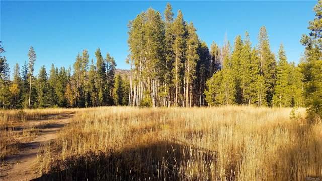 33345 Appaloosa Way, Oak Creek, CO 80467 (#2179024) :: The Margolis Team