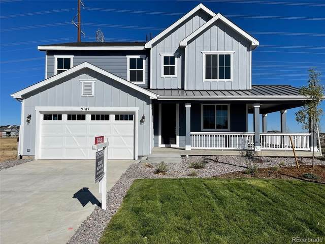 9198 Fraser River Street, Littleton, CO 80125 (#2181128) :: The HomeSmiths Team - Keller Williams