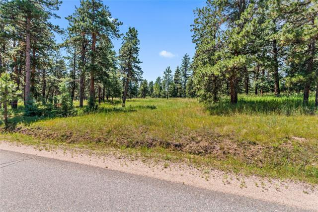 8187 Centaur Drive, Evergreen, CO 80439 (#2191423) :: The DeGrood Team