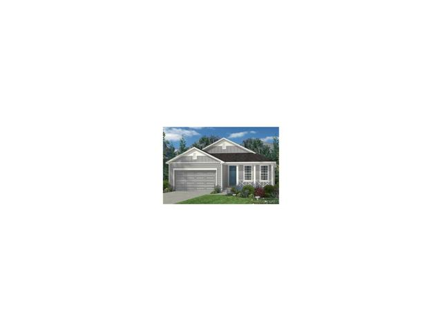524 Tippen Place, Castle Rock, CO 80104 (#2197676) :: The Peak Properties Group