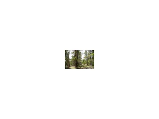 417 Hemlock Drive, Leadville, CO 80461 (MLS #2201133) :: 8z Real Estate