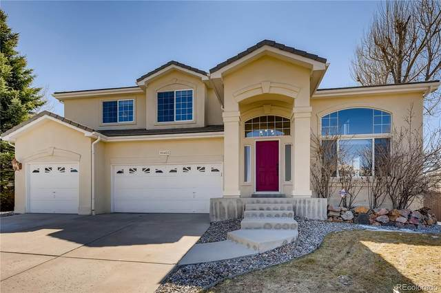 10403 Grizzly Gulch, Highlands Ranch, CO 80129 (#2201809) :: The Dixon Group