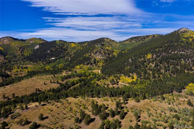 Robinson Hill, Black Hawk, CO 80403 (MLS #2202708) :: Bliss Realty Group