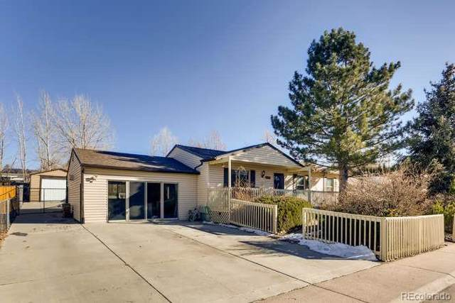 920 Park View Street, Castle Rock, CO 80104 (MLS #2204026) :: Bliss Realty Group