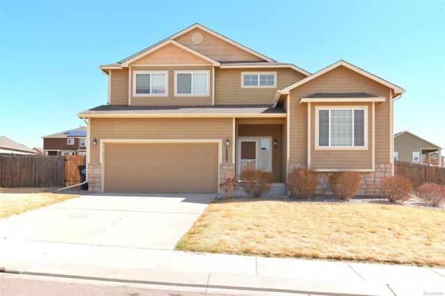10665 Darneal Drive, Fountain, CO 80817 (#2204148) :: Wisdom Real Estate