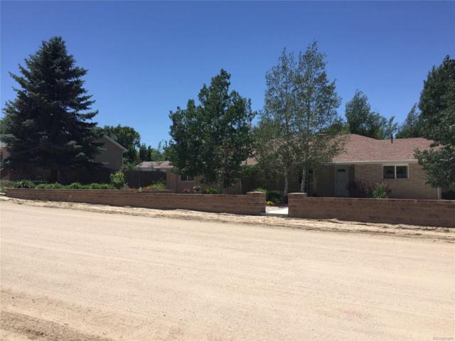 313 Dakota Avenue, Simla, CO 80835 (MLS #2204778) :: 8z Real Estate